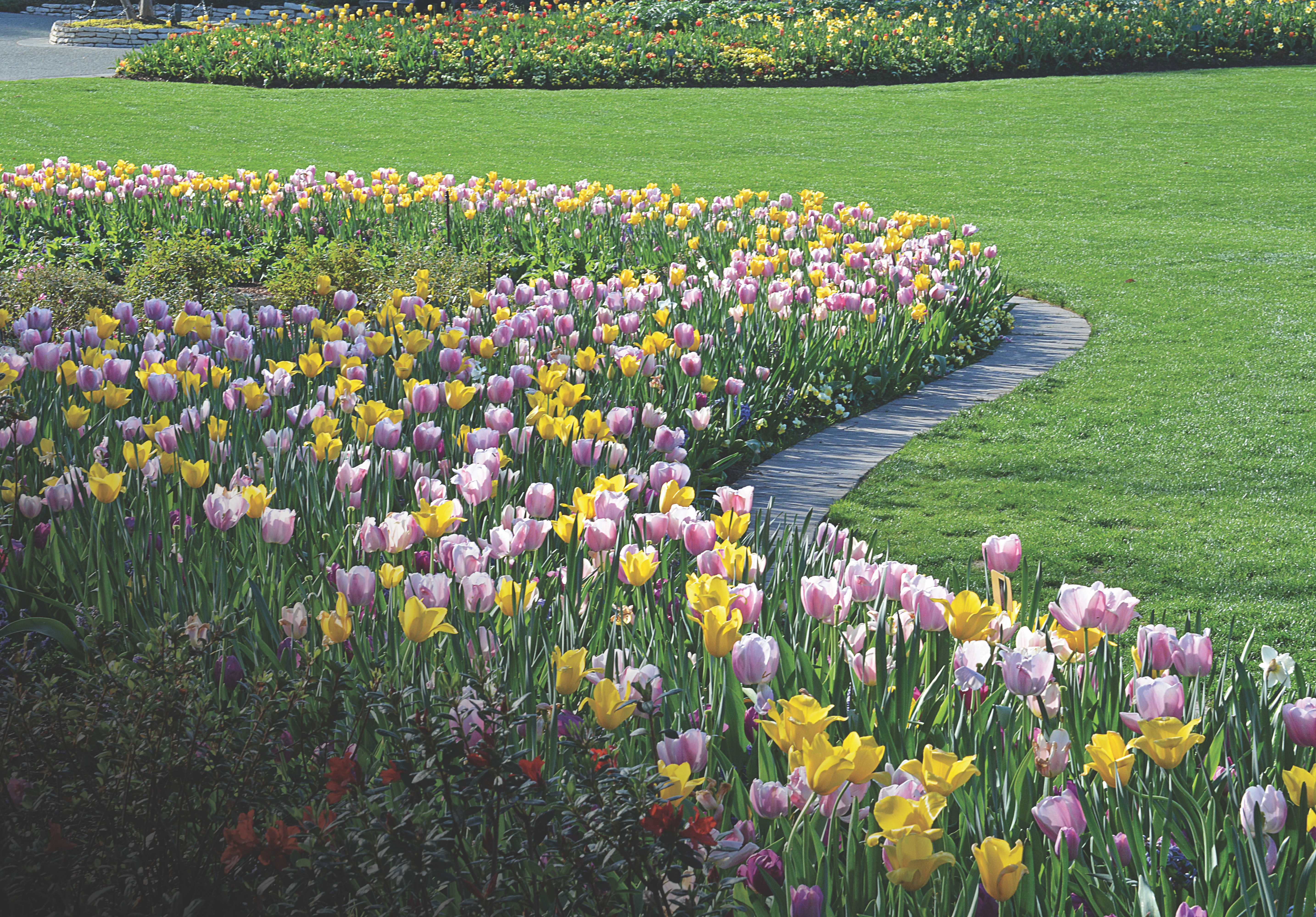 Experience The Beauty Of The Dallas Arboretum