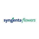 Syngenta Flowers