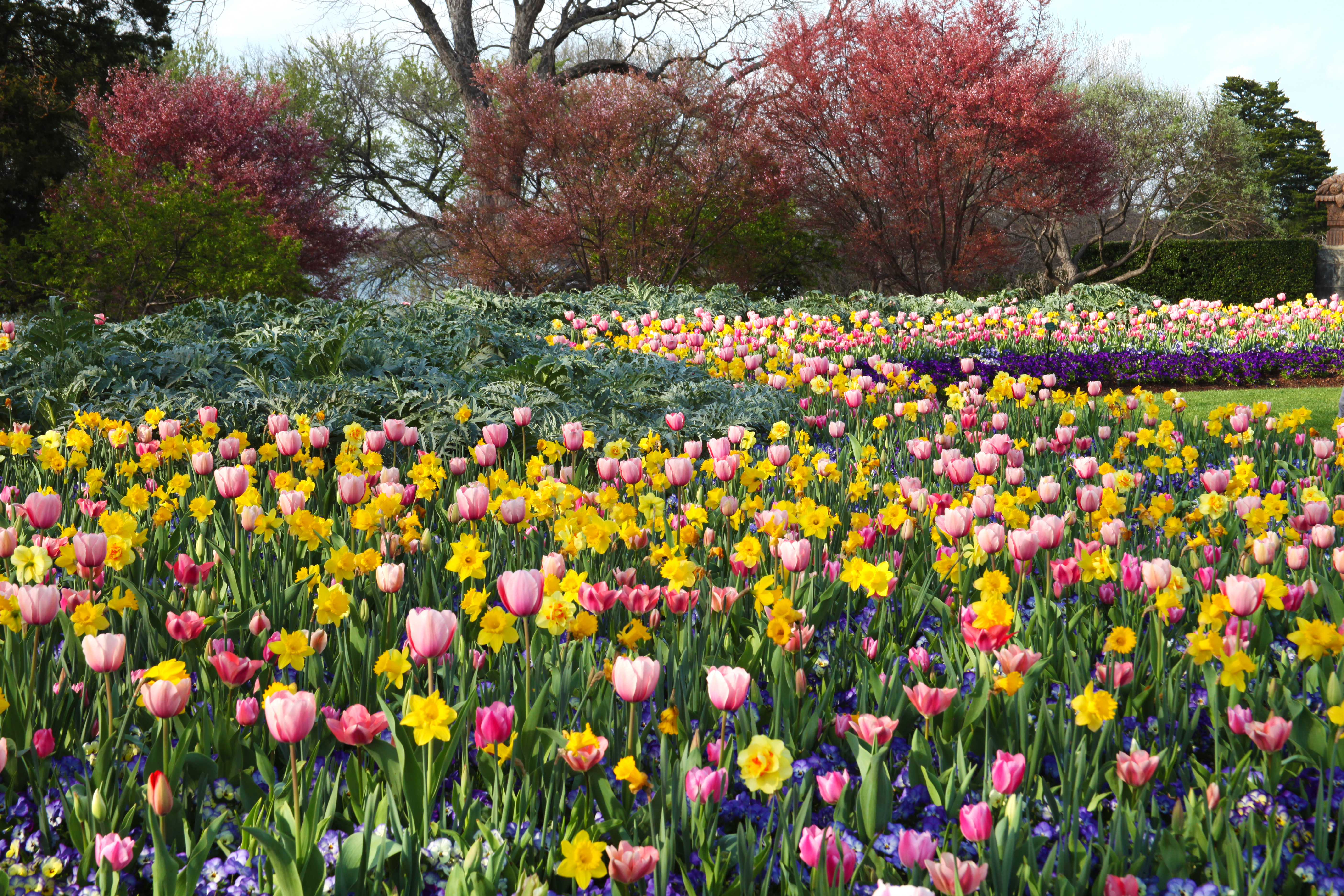 Margaret Elizabeth Jonsson Color Garden