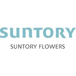 Suntory Flower