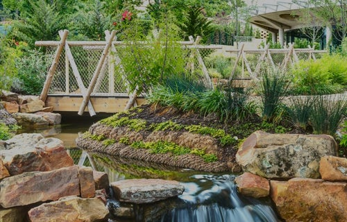 Calendar of Events | Dallas Arboretum and Botanical Garden